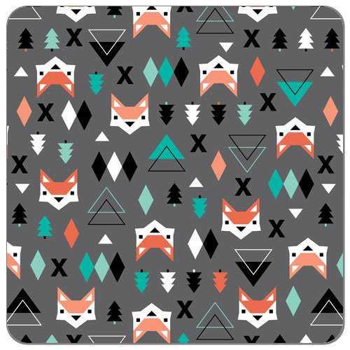 Geométric Fox